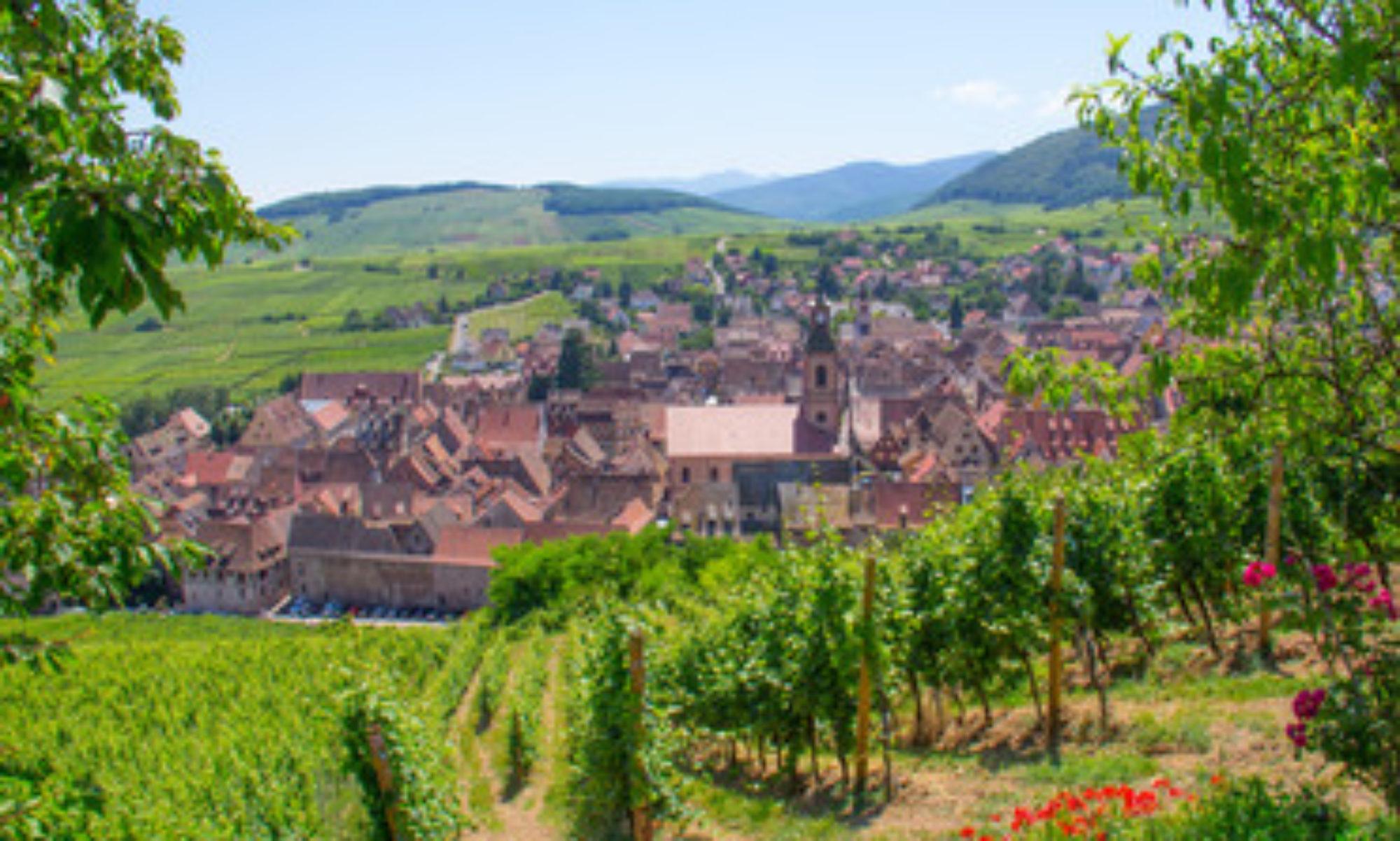 Résilience Sud Alsace
